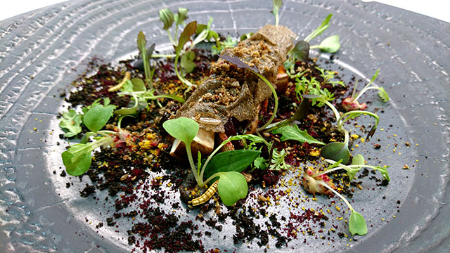'Walk in the Woods' - Truffle dish consists of mushrooms, truffles prepared in various ways, beetroot and a variety of leafed garnish.